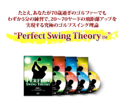 Perfect Swing Theory page